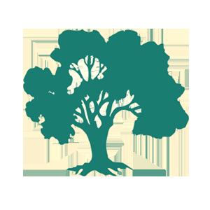 pwwood-logo-tree
