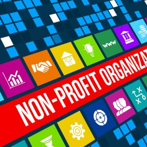 non-profit-300x300